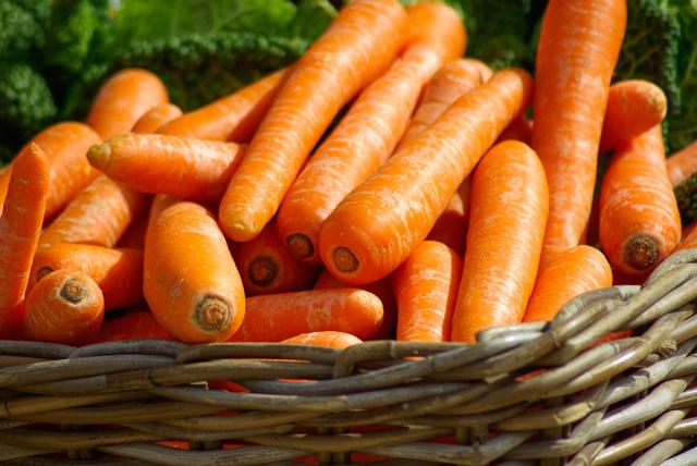 Cenoura na gravidez